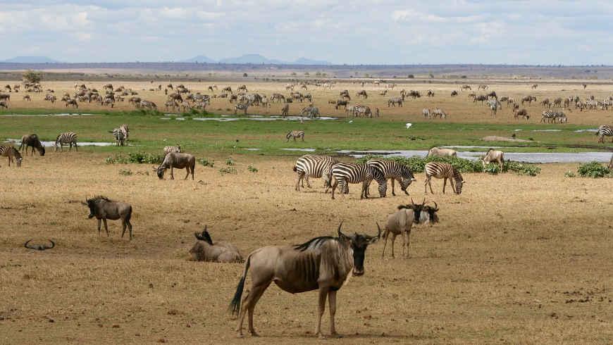 Kenia rondreizen