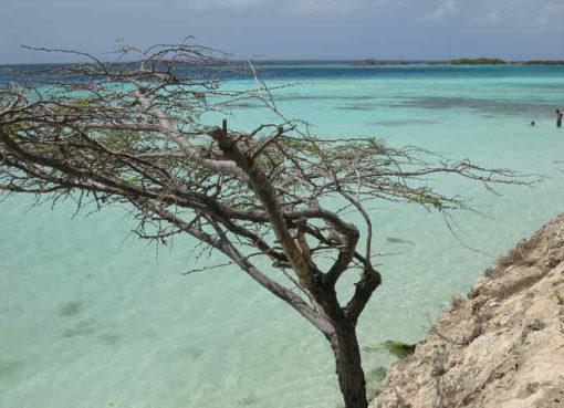Vliegtickets Aruba